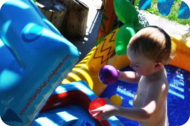 Blue Eyes playing in his new Kiddie Pool